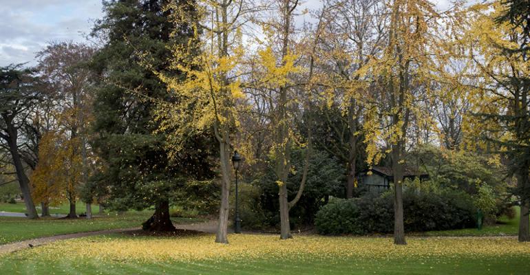 Parc Montsouris Equipements Paris Fr