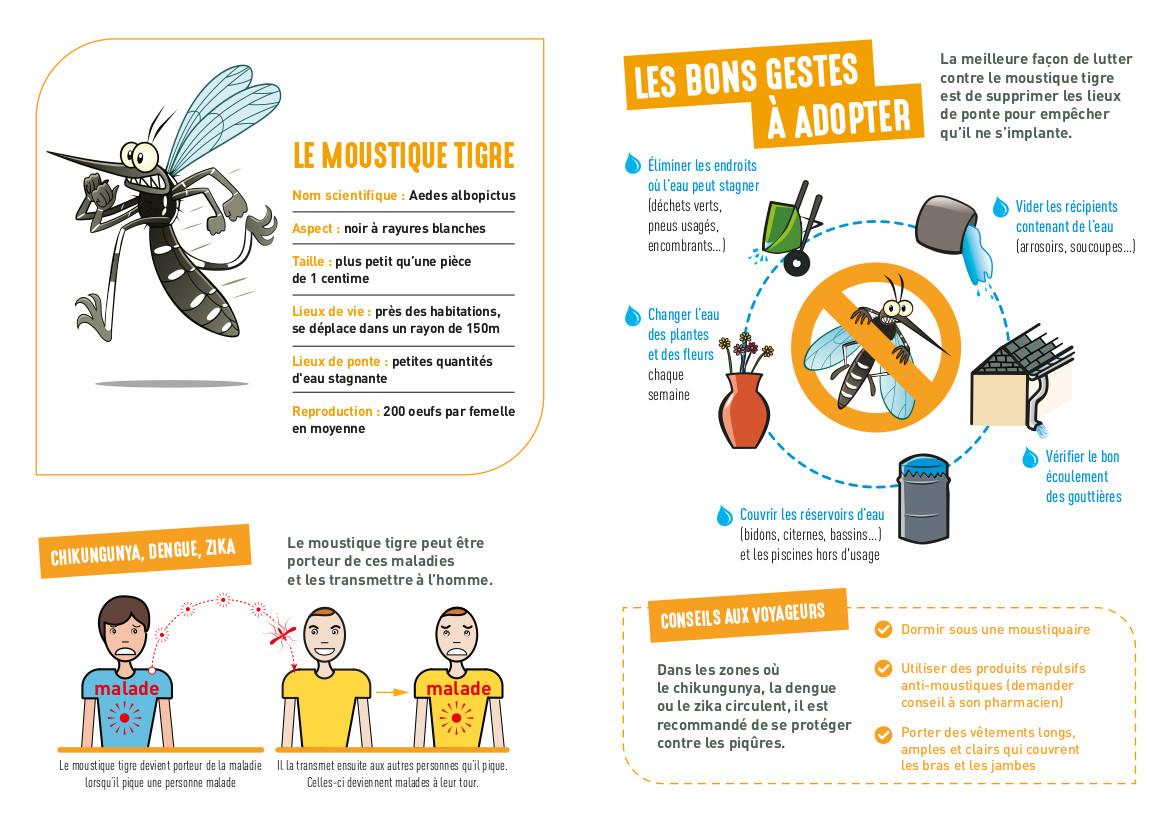 Plaquette informative lutte contre le moustique tigre