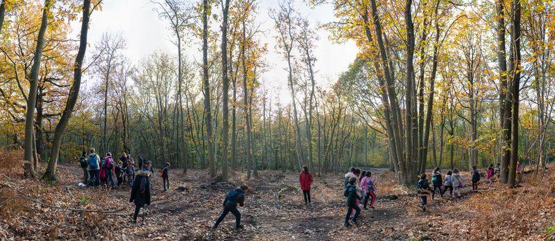 Visite en forêt des enfants Montmorency